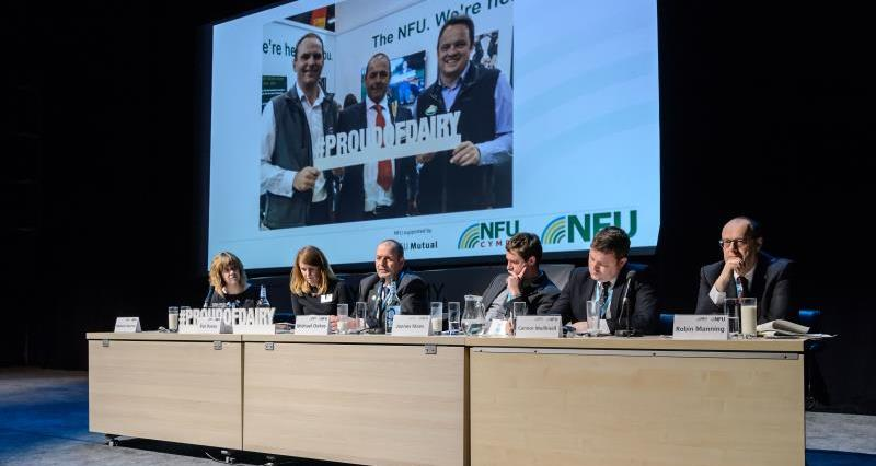 Driving the dairy agenda: Join the NFU Dairy Board