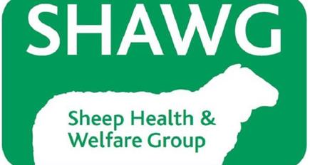 Sheep Health And Welfare Group conference 2018
