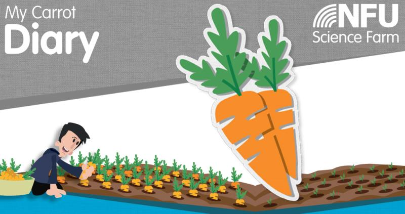 NFU education - carrot diary_50697
