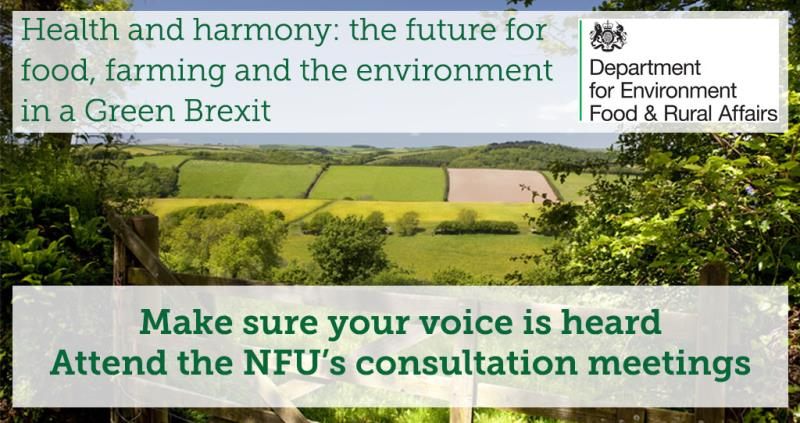 Defra consultation paper - member meetings_52420