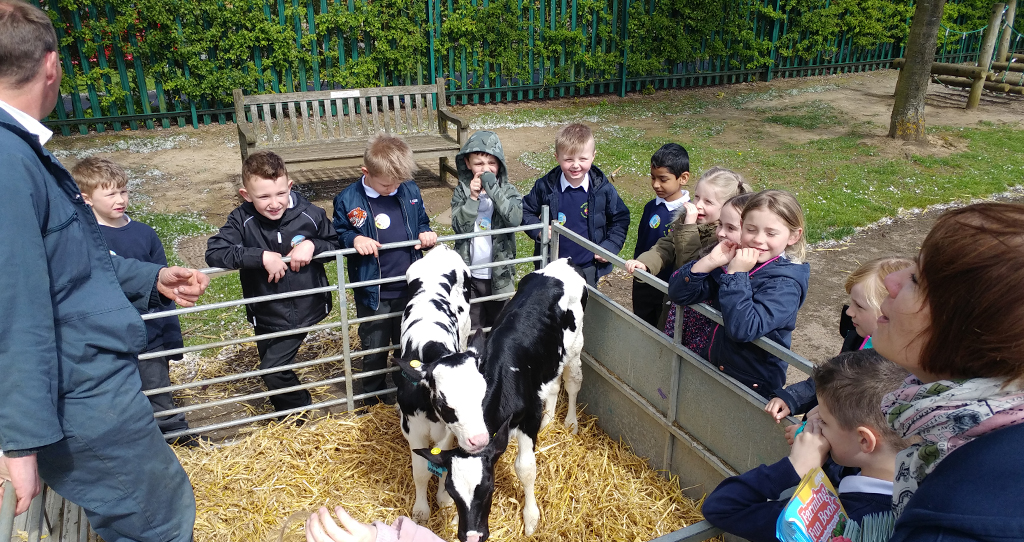 Educating Brambleside - bringing food and farming to the classroom