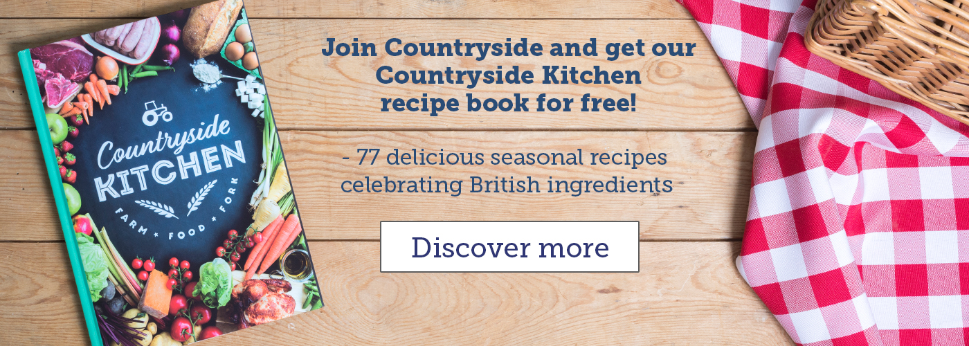 Countryside Kitchen - summer promo banner_53888