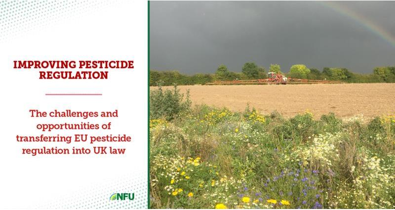 Opportunities for better UK pesticide regulation - NFU report