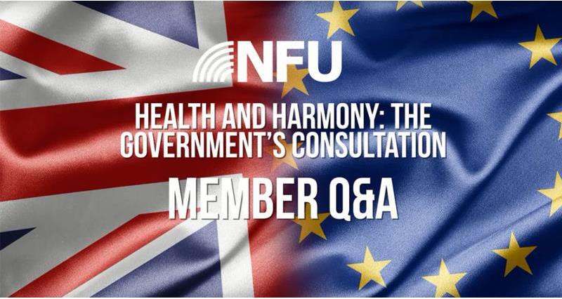 Keep in the know with our consultation Q&A