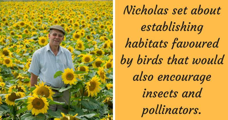 Nicholas Watts - Vine House Farm_55440
