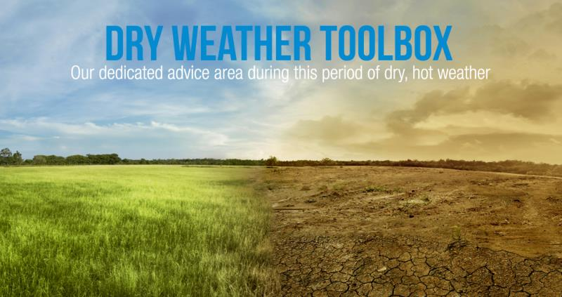 dry weather toolbox_55966