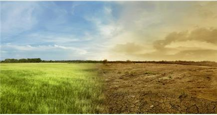 Dry weather advice for farmers by Natural Resources Wales