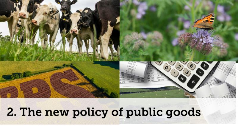 new policy of public goods_52093