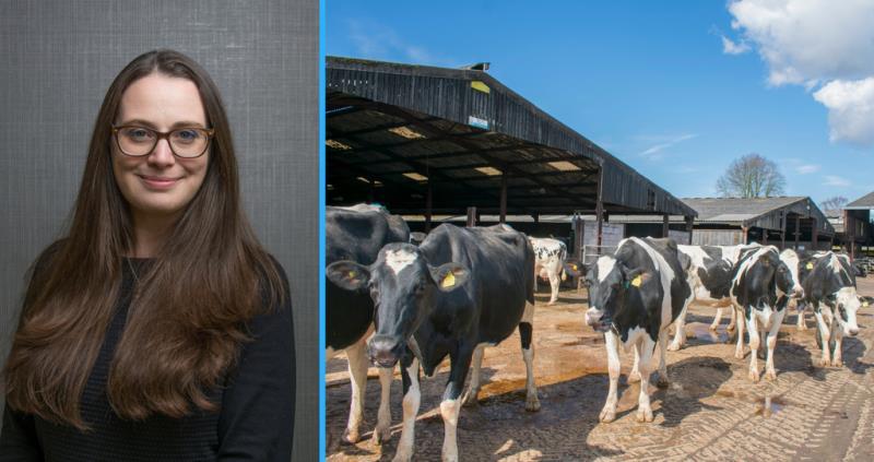 Nina Winter - dairy cows regulation visit_56734