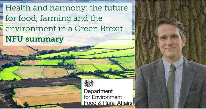 At a glance - Defra's vision for the future of British agriculture