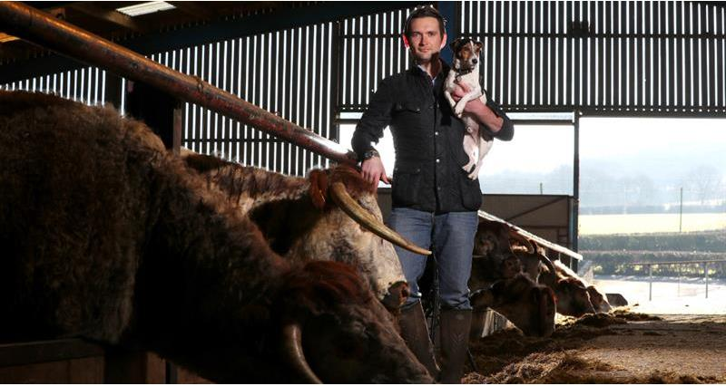Livestock, from the lowlands to the uplands