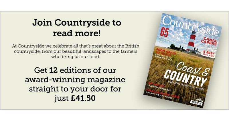 Countryside advert for web - July 2018_54529