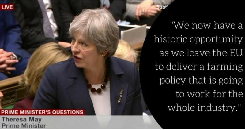 Theresa May during PMQs _52638