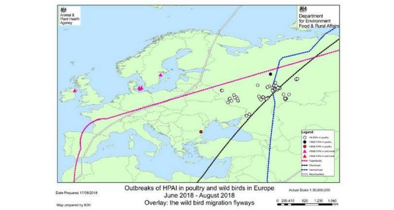 Russia AI outbreaks_56923