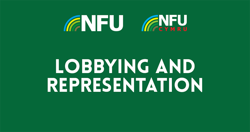 Lobbying and representation