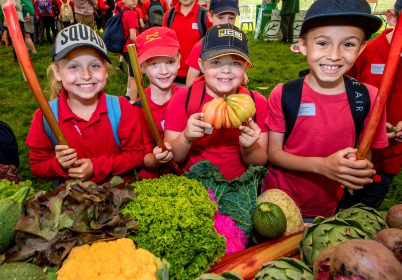 Essex schools food and farming day_54428