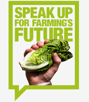 Speak up for farming - lettuce - web logo_52901