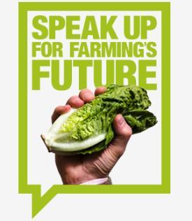 Speak up for farming - lettuce - web logo_52901