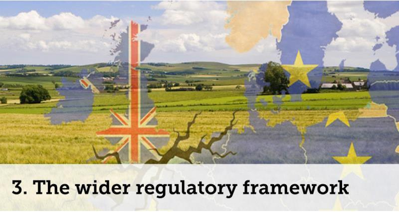wider regulatory framework_52094