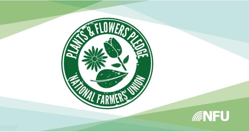 NFU launches new Plants and Flowers Pledge