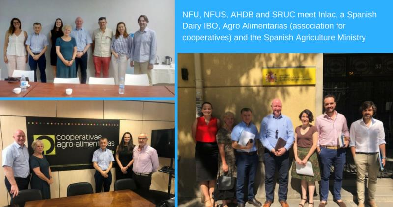 Nina Winter visits Madrid re regulation of dairy contracts in Spain _56733
