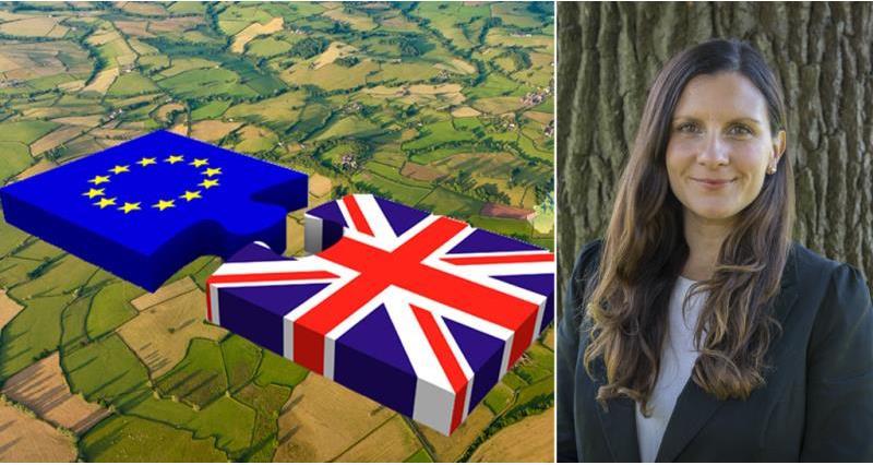 Lucia Zitti and EU UK split_52056