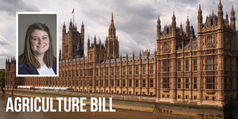 Agriculture Bill composite Tori _57947
