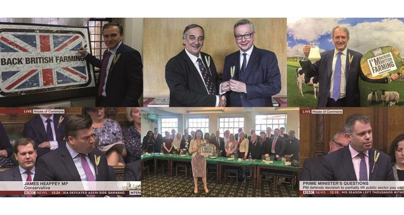Back British Farming Day MP collage_46345