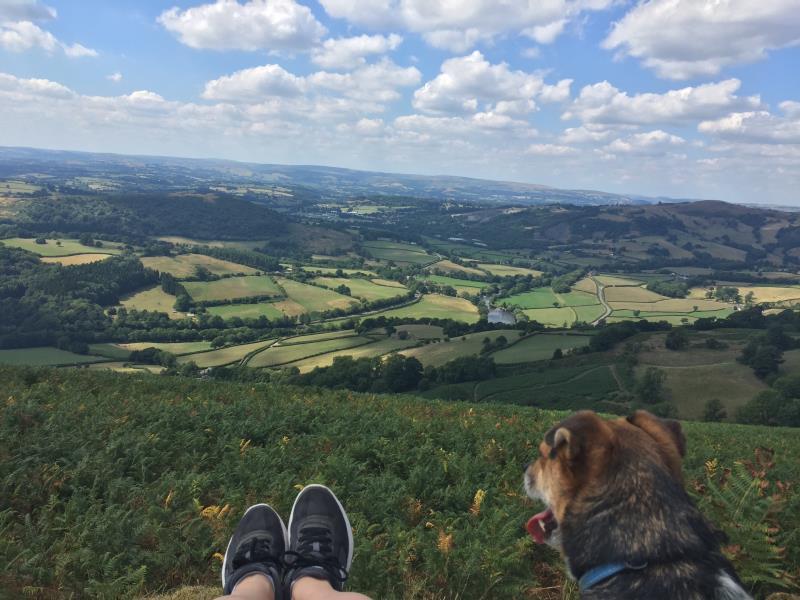 Welsh landscape, Brecknock_57753