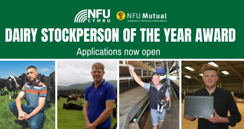 Dairy stockperson award_57347