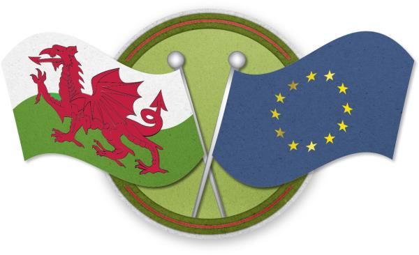 Welsh and EU flags - Brexit_43013