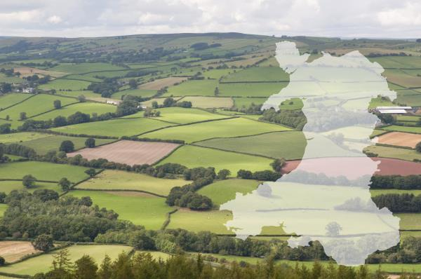 Welsh farmland with map of Wales_43017