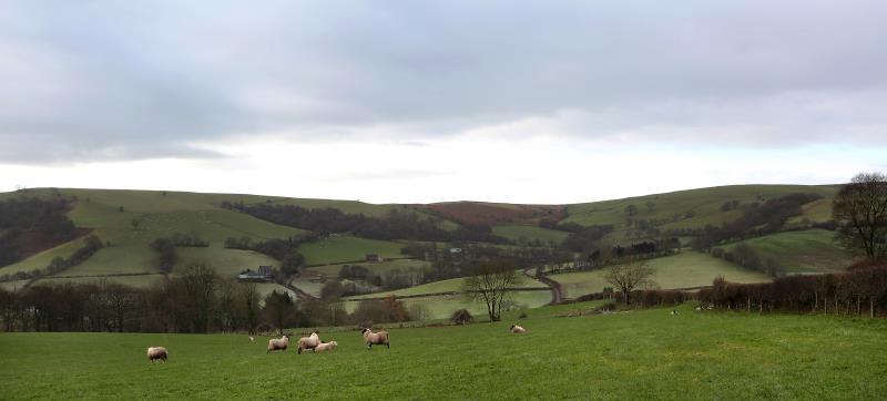 Welsh landscape_49561