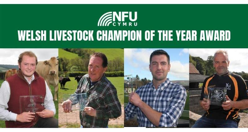 Welsh Livestock Champion Award 2018 launched