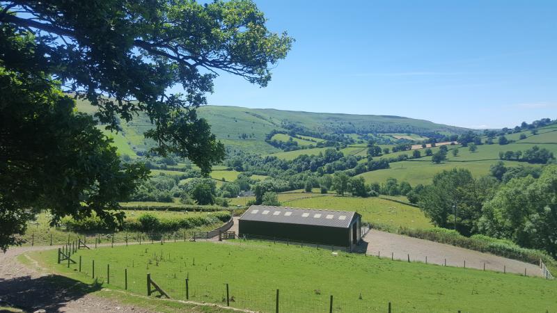 Rhulen landscape, Wales_56609