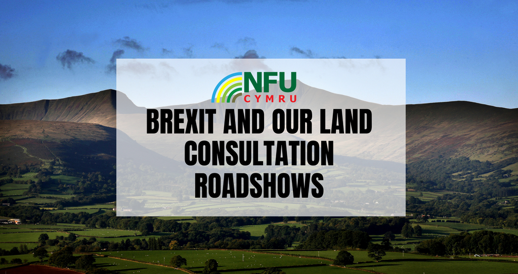 Brexit consultation roadshows_55588