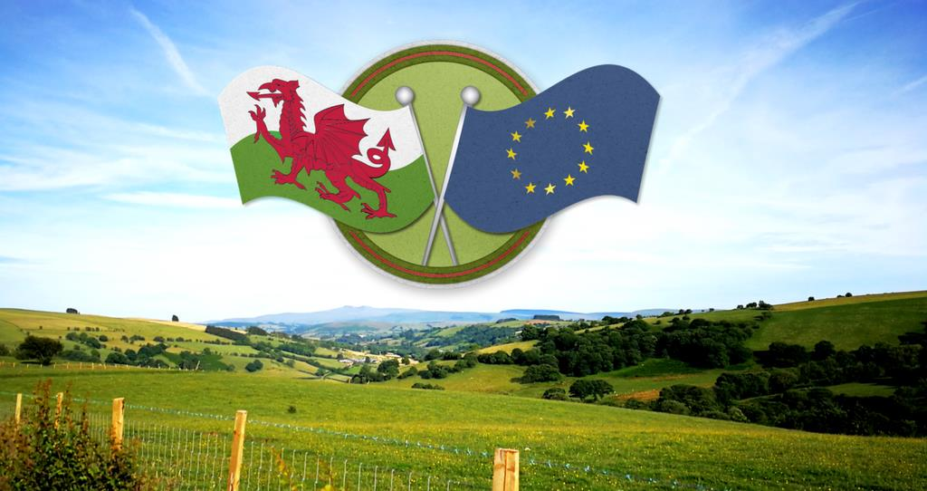 Brexit and our Land Consultation hub - have your say