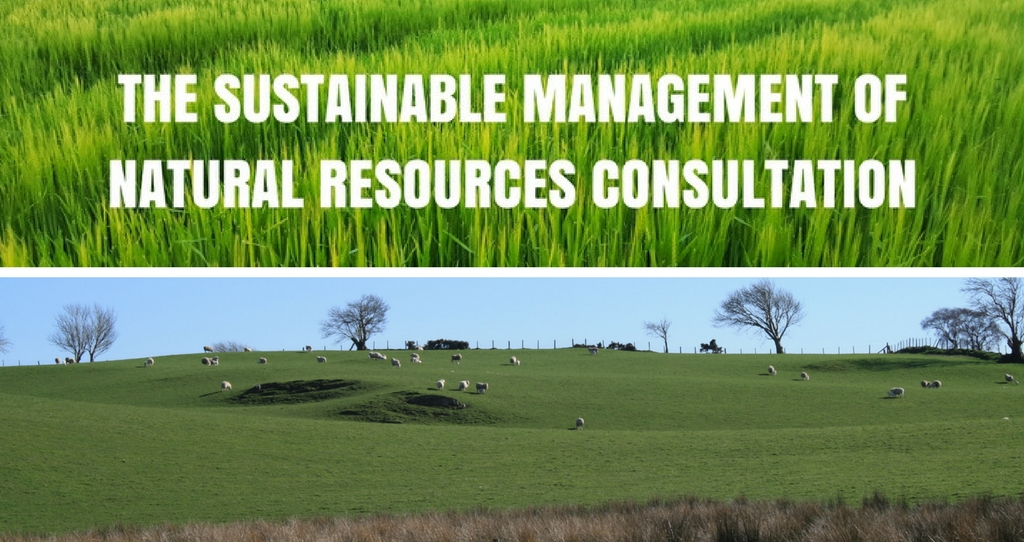 Taking forward Wales' sustainable management of natural resources