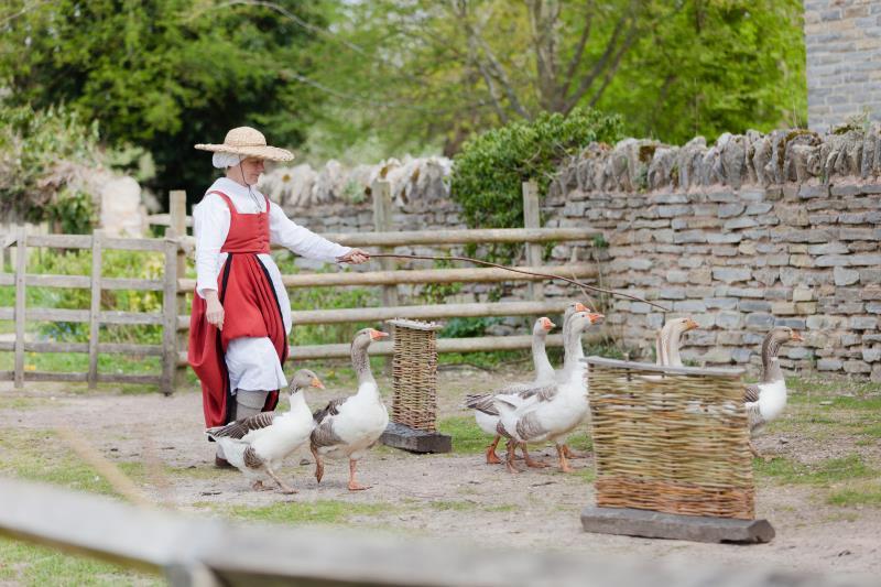 Mary Arden's Farm, Stratford_45145