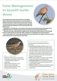 CFE Turtle Dove leaflet_49866
