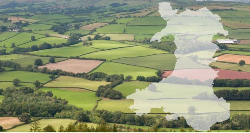 Future funding for Welsh farmers
