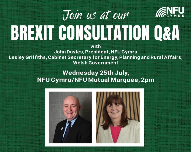 RWS Brexit Consultation Q & A_55537