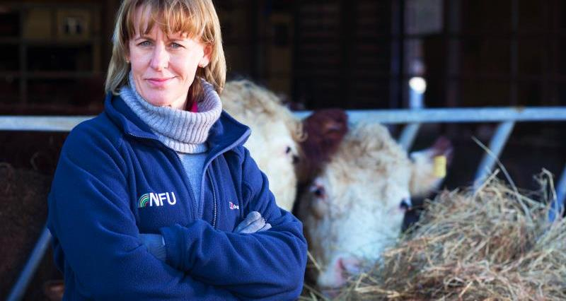 It's time to tell the world about British farming, says new NFU President