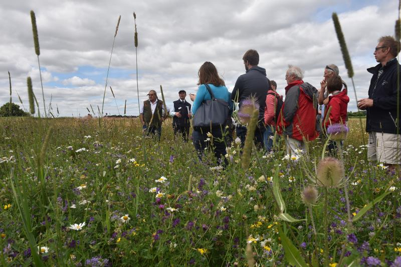 CFE Business Benefits of Pollinators RAU Cirencester_45248