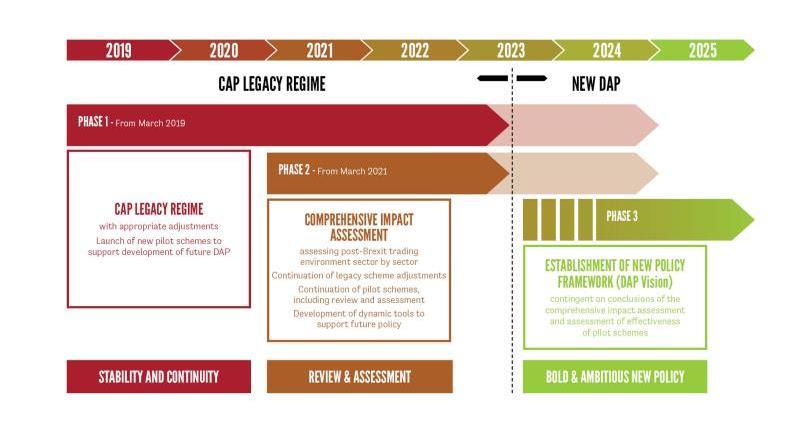 dap report flowchart infographic web crop_47884