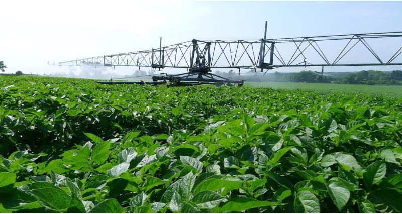 irrigator boom web crop_48873