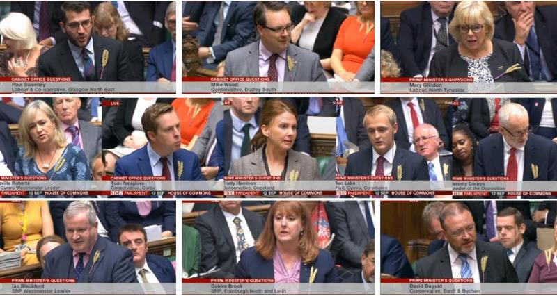 mps wearing wheat pins at pmqs back british farming day 2018_57375