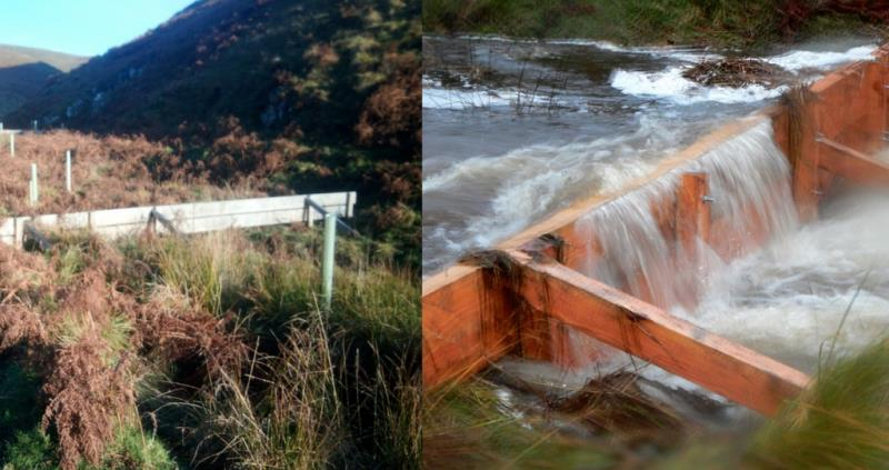 Graham Dixon Northumberland farmer dams_52804