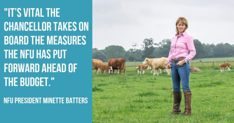 minette batters nfu budget submission to chancellor autumn 2018_58116