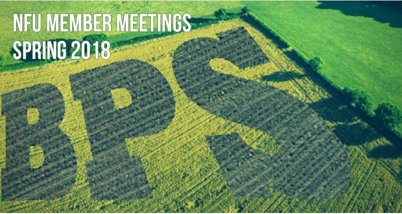 bps member meetings spring 2018_51202